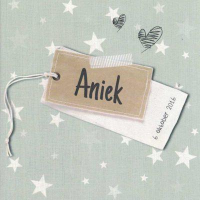 Aniek