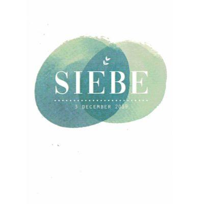 Siebe