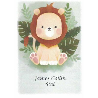 James Collin