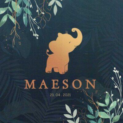 Maeson